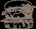 Seehund Warnemünde Fischburger
